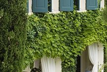 Exteriors / Exteriors of homes & garden ideas