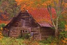 cabanas no campo