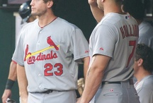 Cardinals <3 / by Holly O'Dell
