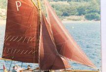 Small sailboat