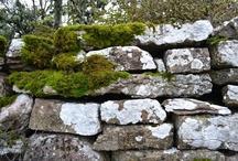 Nature: Stones, Boulders, Minerals