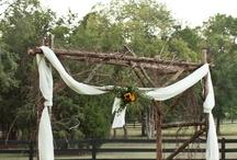 Weddings  / by Patti Le'Boeuf