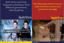 Harry Potter / by Elizabeth Falk