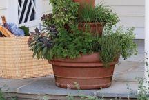 jardines chayo