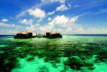 Maldivler - Maldives  / Rüya gibi bir tatil için Jumeirah Dhevanafushi Exclusive farkıyla Maldivler! http://bit.ly/HQxaYN