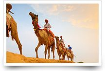 Rajasthan Tour Packages / We are providing you the complete Indian Royal Heritage Tour packages
