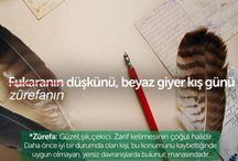 Türkçe- edebiyat
