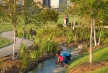 Sustainable Urban Drainage