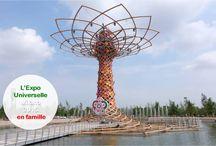 Expo Universelle Milano 2015
