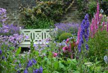 Zahrady / Zajímavé zahrady navštívené či vysněné.