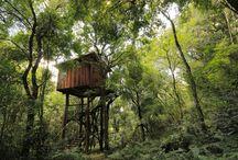 Cuña Piru Lodge / Tree House