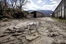 Una stalla, un'arena / I luoghi dove ha dimora la #fondazioneferretti. Tra #franeviadotti sull'alto #appennino #toscoemiliano #collagna #cerreto alpi