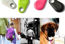 مرتبط با حیوانات خانگی