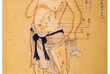 Traditional Chinese Medicine / Recipes and information related to TCM.