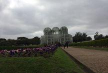 Curitiba - Paraná - Brasil / Jardim Botânico