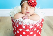 Newborn Photography / by Stacey Kaiser