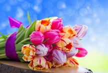 Honeymoon Packages with Flower collections / Honeymoon is a chance to sped the memorable moment with your partner.
