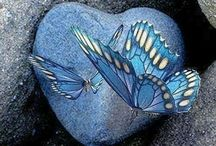 Heart To Heart / Heart shapes In Nature and Design