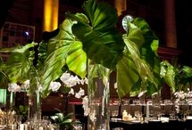 Green event florals / by Cassandra