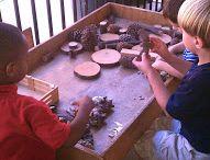 Přírodní materiál dřevo - aktivity