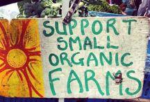 Organic Farm Info