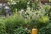 Garden Time / For my current and future gardens.  Practical ideas and impractical dreams that may become practical later.  And because all gardens are beautiful and feed the soul.