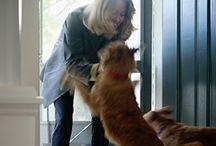 puppy love / by Yolanda Hickman