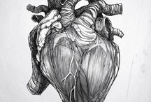 Anatomy, Freaks and Morbid / by Leucosie Valentina Lupi