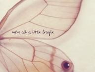butterfly t's