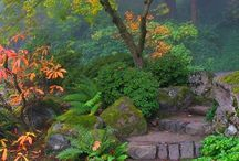Jardines Japoneses / by Natural Gardens