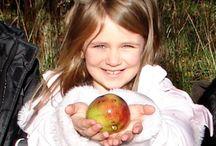 Fruit for Kids / by Lynda Appuhamy kidsinthegarden.co.uk