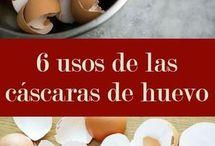 Cascaras de huevo