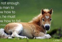 LicianHorse / Horse App