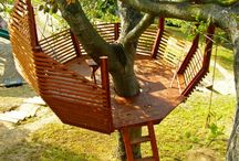 나무 위의 집