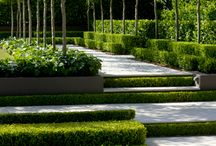Garden: Traditional & Modernist Blend  / by Laara Copley-Smith Garden Design