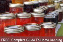 Homesteading/Self Sufficient Living