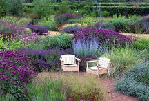 Ideas para Jardín con sol / Jardines