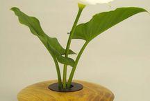 Flower Arrangements / by Jane Willis