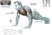 Exercizes