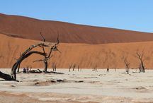 Namibia / by Down Under Endeavours