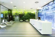 Thiết kế văn phòng xanh / thiết kế văn phòng xanh phá cách tạo không gian thân thiện với môi trường