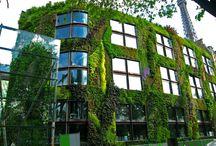 LA | Vertical Garden / Creative Ways to Plant a Vertical Garden