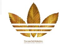 only adidas