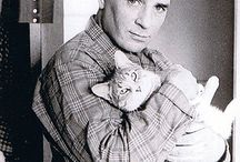 Writers & Cats
