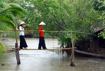 South Vietnam trips / Explore the narrow waterways of the Mekong Delta by boat, unwind on a tropical island surrounded by white sand or visit the much celebrated city of Ho Chi Minh (Saigon). South Vietnam has much to offer and we've created the perfect selection of trips to get you closer to the real Vietnam.