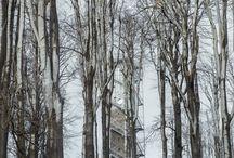 Kilátó / Lookout tower - Galyatető / Képek, tervek a galyatetői újjáépített kilátóról