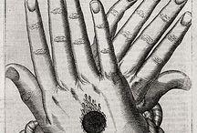 Alchemy ▲ surrealism  ▲anatomy