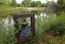 Excursie Witharen 29-05-2015