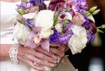 Brides / Voted Best in Bridal