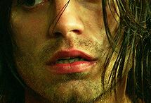 Bucky *.* / I'm so in Love with him *.*